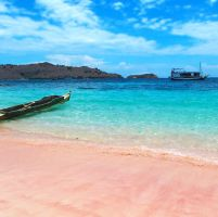 LABUAN BAJO & PULAU KOMODO HARI 2 : KOMODO ISLAND – PINK BEACH – MANTA POINT – KANAWA ISLAND (MP/MS/MM)    pink_beach